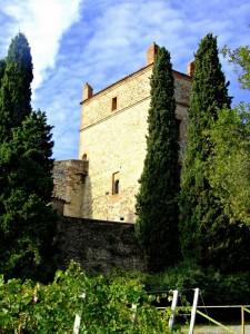 Vista laterale del Castello di Serravalle