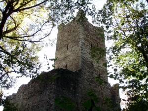 Castello di Mancapane, dal bosco