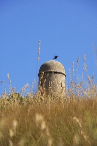 Santa Ninfa - Una torretta del Castello di Rimpinzeri
