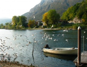 Pescate sul fiume Adda