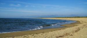 Marina di Vecchiano si estende dalla foce del Serchio a Torre del lago
