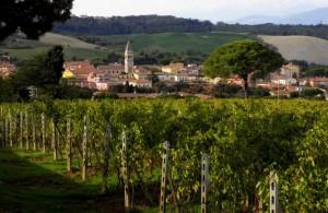 Casciana Terme - Nel Cuore delle Colline Pisane