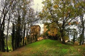 Castello di Sarzano 2