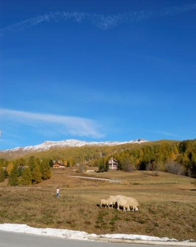 Cesana Torinese - In montagna