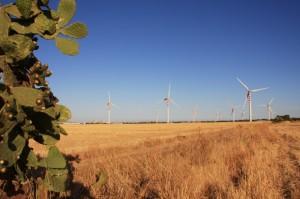 Ancora il campo eolico di Assemini