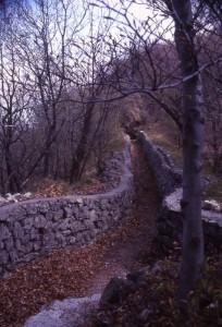 linea cadorna sul monte orsa