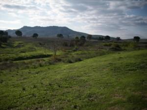 Paesaggio rilassante lucano nei pressi di Grassano