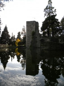 Resti del Castello medievale