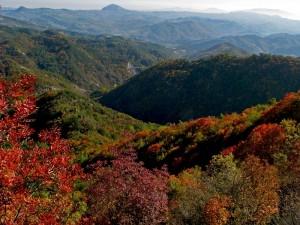 Sarsina le sue colline e sullo sfondo il monte Acquilone