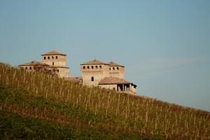 Torrechiara e le sue vigne