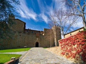 il castello Banfi - n.2