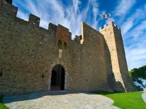 Il castello Banfi - n. 4