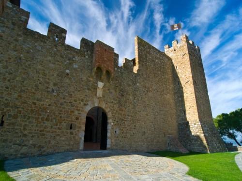 Montalcino - Il castello Banfi - n. 4