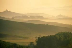 colline nella nebbia