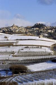 cocconato e le vigne sotto la neve