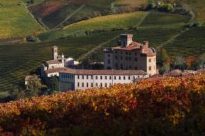 Le colline si colorano - Barolo