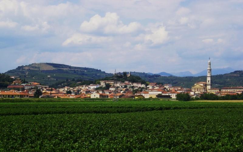 ''Tra i verdi vigneti'' - Monteforte d'Alpone