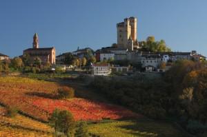 Le colline si colorano - Serralunga d'Alba