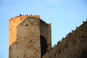 PORTO RECANATI….una torre particolare….