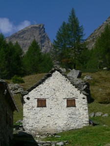 Alpe Campello (Alpe Devero)