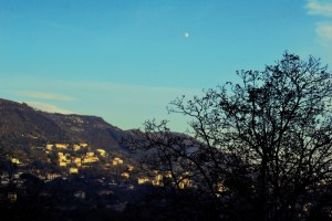 Agerola, l'albero e la luna