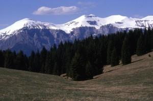 Vette Feltrine e Monte Pavione ( a colori)