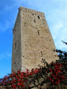 Casa-torre del XII sec.