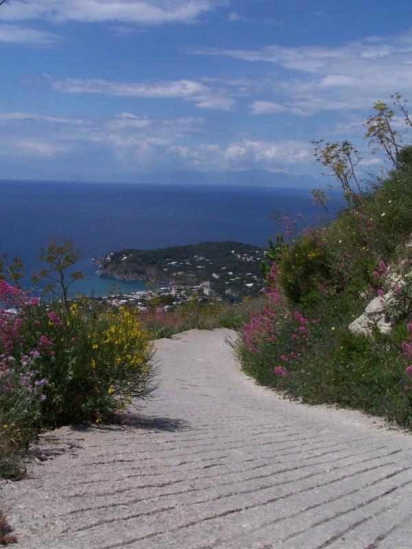 ''Come un giardino'' - Barano d'Ischia