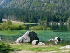 Lo spettro del verde al lago superiore di Fusine