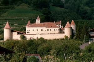 il castello di Coldrano