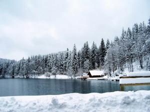 lago inferiore di fusine