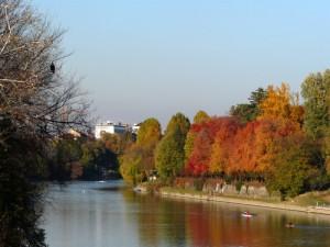 United Colors Of Torino !