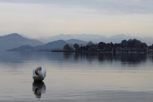 Castelletto Sopra Ticino - Natura Solitaria