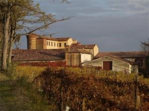 nel centro del Monferrato…..