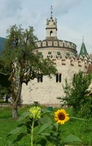 Fiori e castelli…