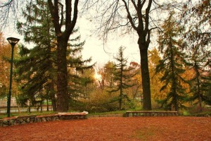Autunno al parco