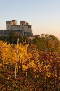 Torrechiara: il Castello ed i vigneti