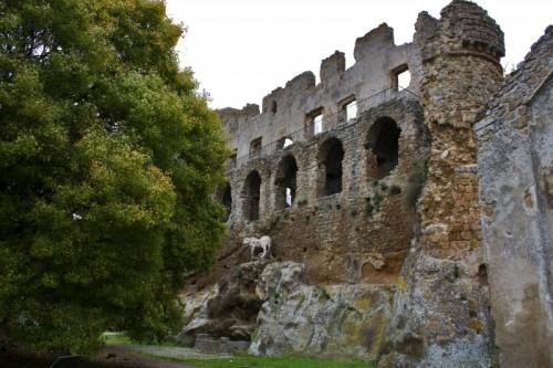 Canale Monterano - Il leone vigila sulle rovine