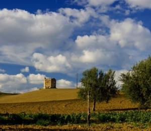 Un mistico silenzio avvolge la Torre di Albospino