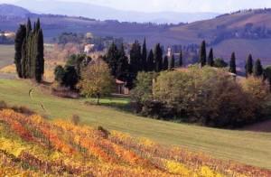 L'autunno a Serra