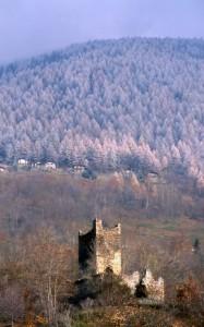 Colori autunnali nei boschi attorno alla torre di Mancapane