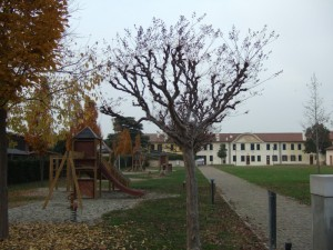 autunno a ca' celsi