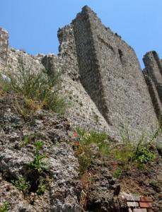 Rocca dei Papi 2