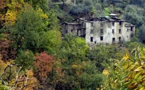 I colori allegri dell'autunno ( loc. villa di Soglio)