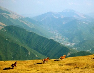 Vista dal Monte Nerone