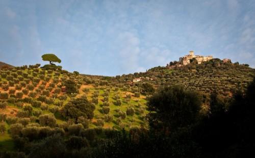 Capalbio - Forze contrapposte