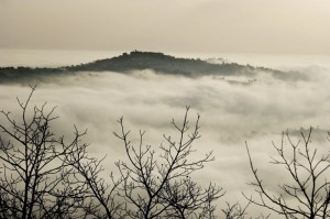""""""" Staffolo """" tra la Nebbia"""