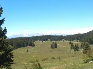 Lavarone-Luserna Malga Millegrobbe  sullo sfondo Gruppo del Brenta