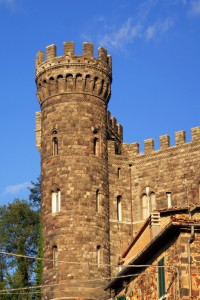 Torre Alfina 4