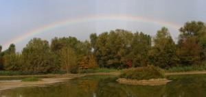 Arcobaleno nell'oasi